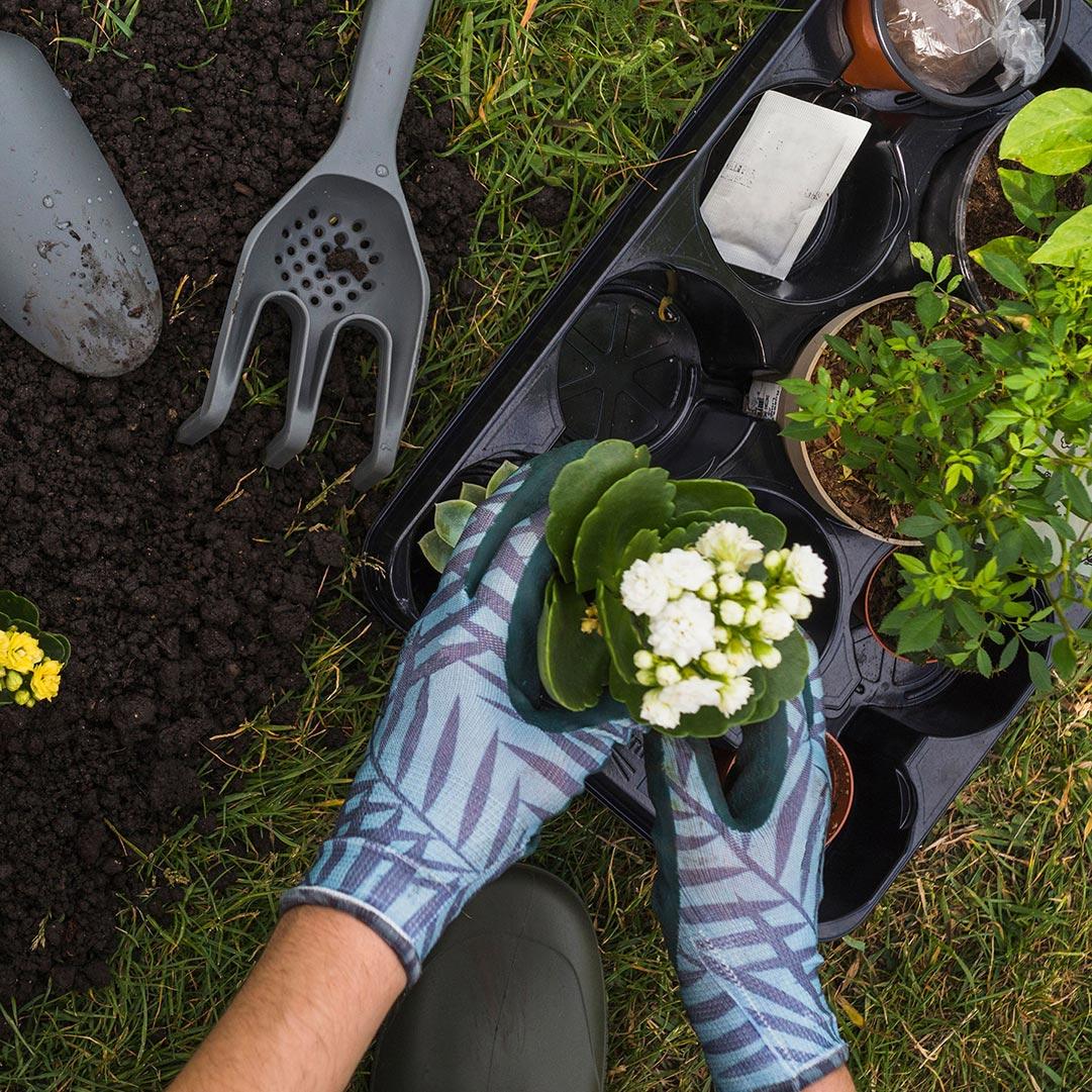 Roundup Garten: A. Giger Reinigung / Allroundservice Ihr Partner Für